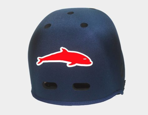 Dolphin Graphic